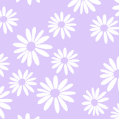 White_Daisies_on_Lilac_shop_thumb