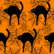 rcat_on_orange_spider_web_copy_shop_thumb