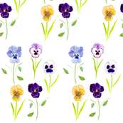 rrPansies_close_alternative_copy_shop_thumb