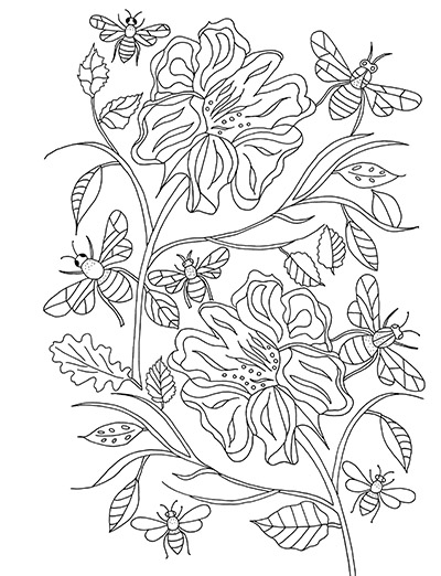 larkspur coloring pages - photo#21